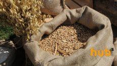 Украина сократила экспорт зерновых