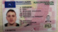 В Украине масштабно подделывали водительские права