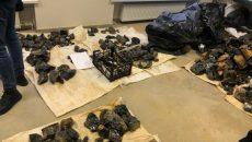 Полиция разоблачила схему незаконной добычи драгоценных камней
