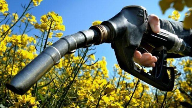 Минэнерго хочет простимулировать производство энергии из биотоплива