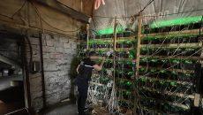 СБУ заблокировала незаконную майнинг-ферму