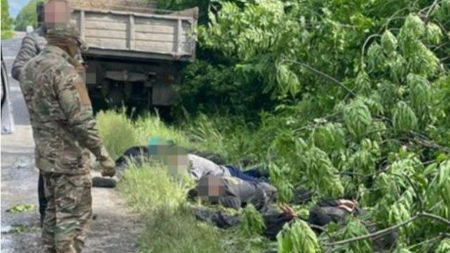 СБУ прекратила вырубку деревьев в нацпарке «Подольские Товтры»