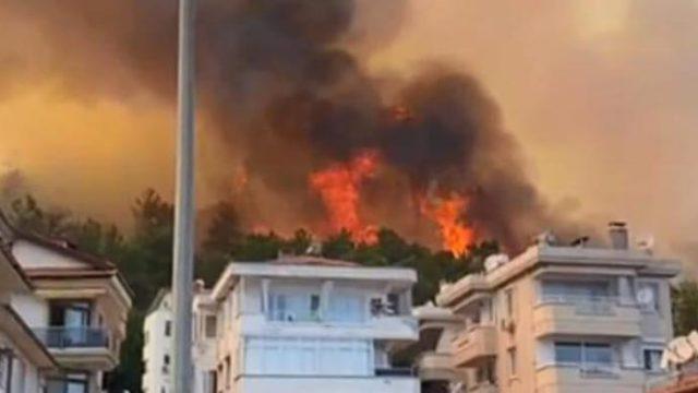 В Турции взяли под контроль более 100 лесных пожаров