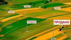 Рынок земли: украинцы продали свыше 6 тысяч участков (инфографика)