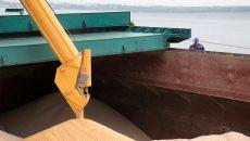 Сухогруз с 7 тыс. тонн украинской пшеницы затонул в Критском море
