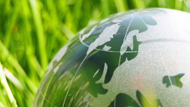 В Украине планируют создать Бюро экологического страхования