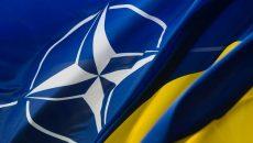 В ВСУ внедрены уже более 300 нормативных документа НАТО
