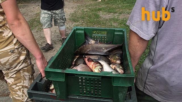 В Украине сократилось потребление рыбы