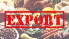 Украина увеличила экспорт агропродукции на 6,7% - Минагро