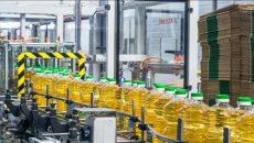 В августе выпуск подсолнечного масла уменьшился на 47%