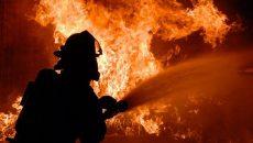 В Украине за сутки произошло 127 пожаров - ГСЧС