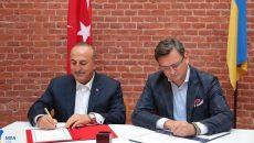 Глава МИД Турции приехал во Львов